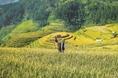미얀마에 대해서 몰랐던 것들…