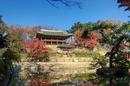 [라이프&역사]조선시대 왕실 도서관